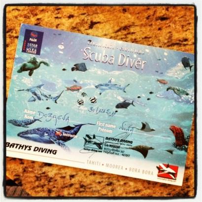 PADI Dive Certificate, Nina Dobrev