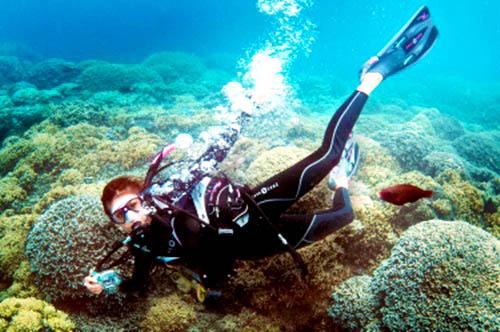 Nina Dobrev, Diving in Bora Bora
